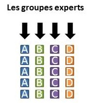 groupe_experts